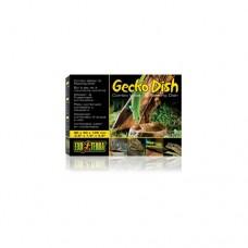 Gecko Dish