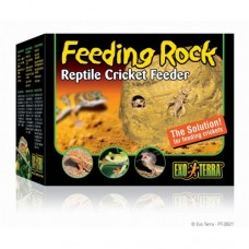 Feeding Rock - Reptile Cricket Feeder