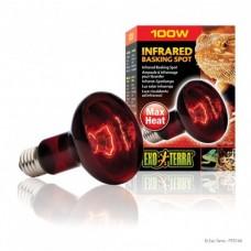 Infrared Basking Spot - 100W